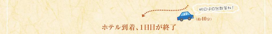 明日は自然散策ね!(約40分)Royal Hotel 富山砺波到着、1日目が終了