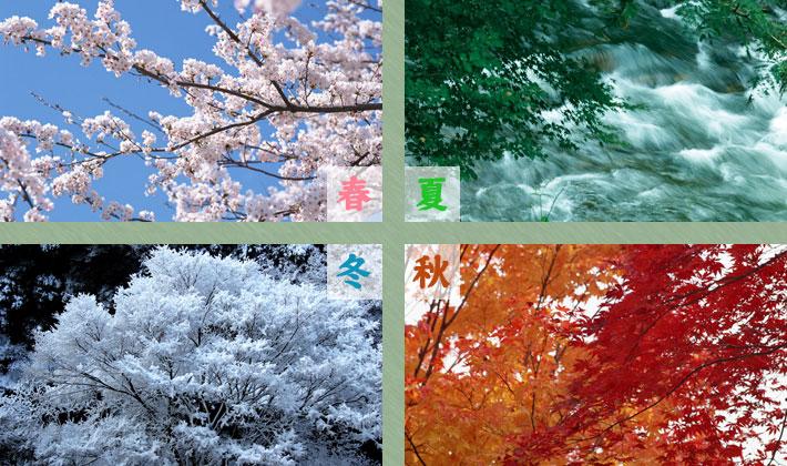 山中温泉河鹿荘ロイヤルホテル 開湯1300年 松尾芭蕉が「奥の細道」で最も長く逗留した温泉地 山間部の情緒に四季が広がる