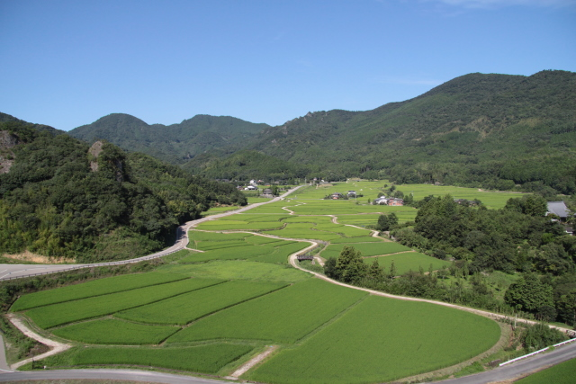 国東の田園風景