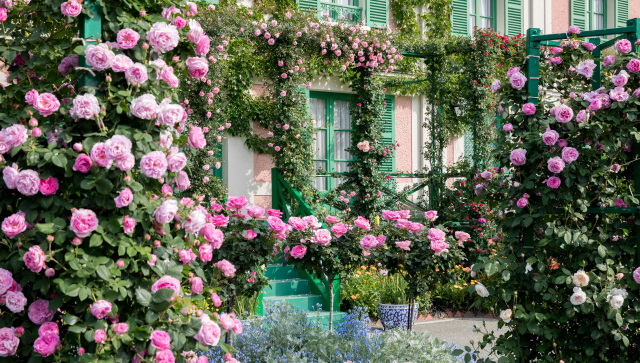 浜名湖ガーデンパークの薔薇