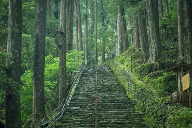 那智の滝への道