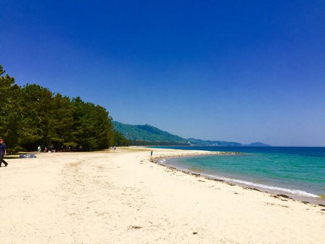 白い砂浜と青い空・海・松林!日本三景で海水浴という贅の極み