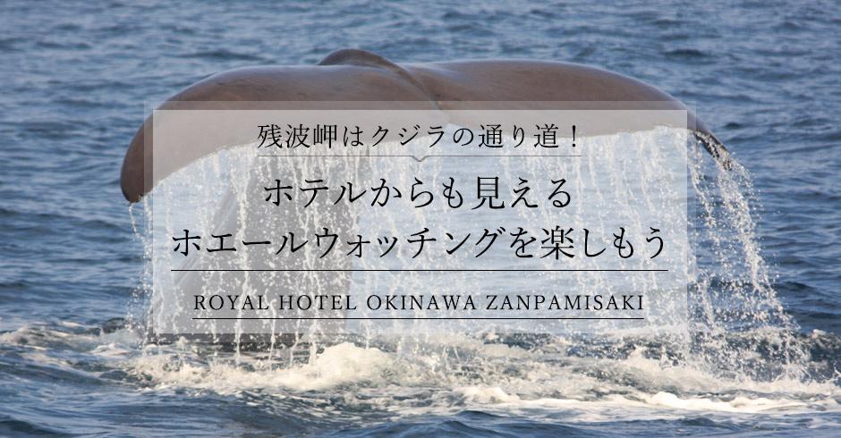 残波岬はクジラの通り道!ホテルからも見えるホエールウォッチングを楽しもう!