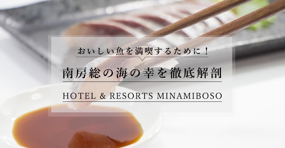 Hotel & Resorts MINAMIBOSO
