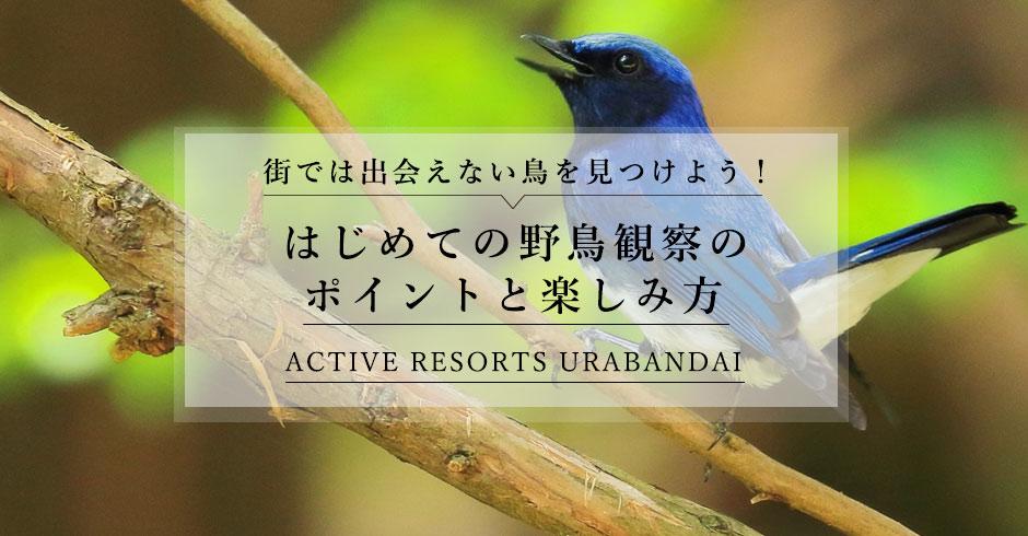 Active Resorts 裏磐梯