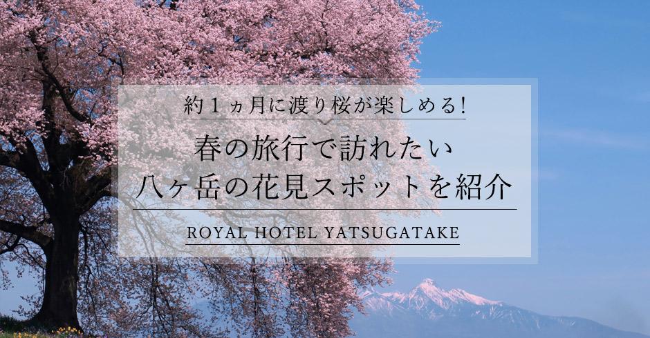 約1ヵ月に渡り桜が楽しめる!春の旅行で訪れたい八ヶ岳の花見スポットを紹介