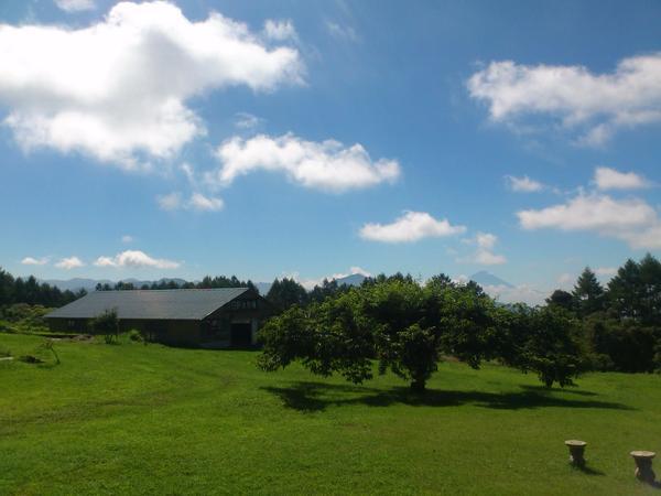 日野水牧場