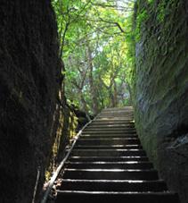 切通し跡(岩の回廊)