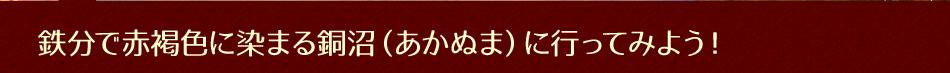 鉄分で赤褐色に染まる銅沼(あかぬま)に行ってみよう!