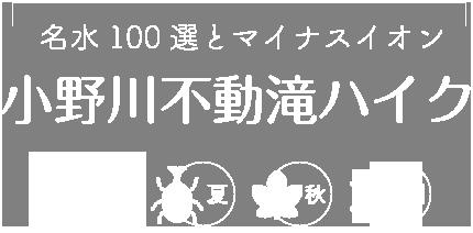 〜名水100選とマイナスイオン〜小野川不動滝ハイク