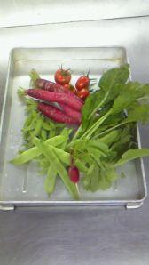 野菜201007121733000